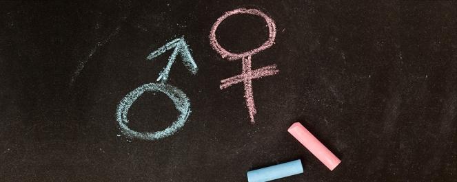 Gender Dysphoria 2.jpg